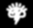WildPoppy_Rebrand_webicons-21.png