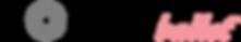 Focus Ballet Logo.png