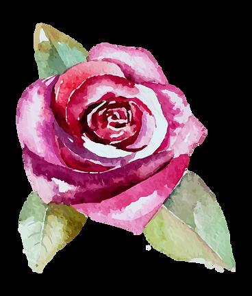 Rose 2_edited.png