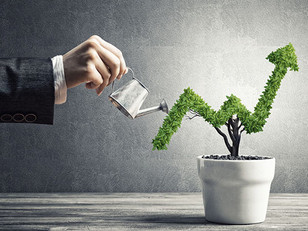 Make Your BSC Sellable - 5 Tips To Get Maximum Value Out Of Your Company