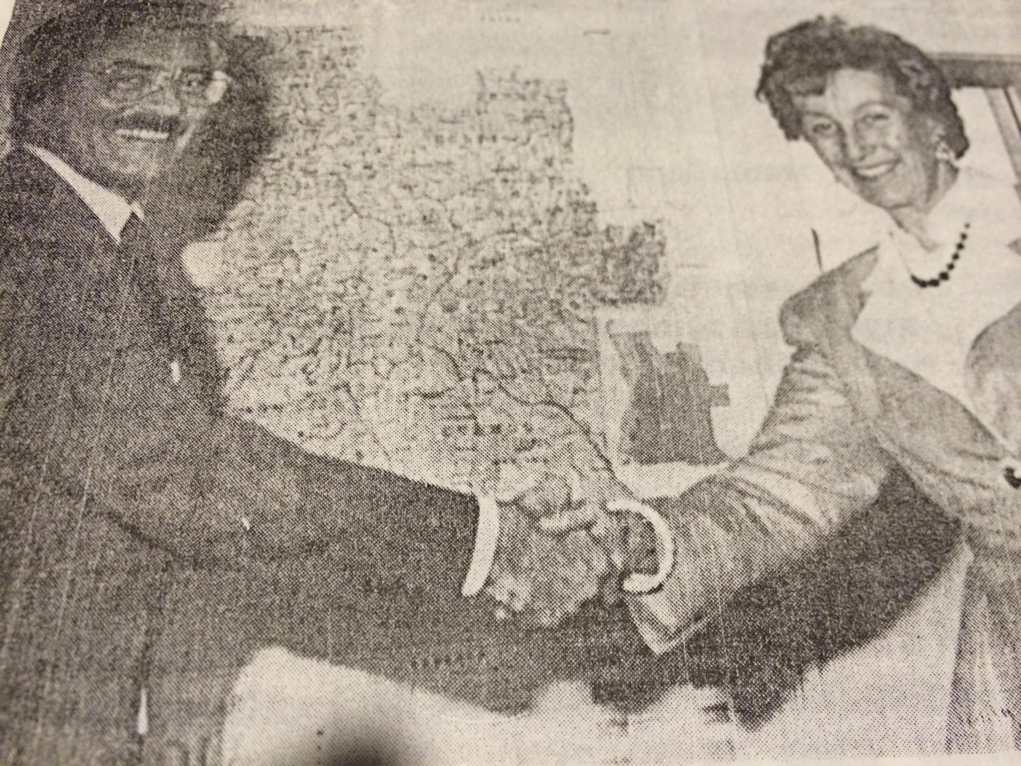 Eleições 1992 com Margaret Anstee