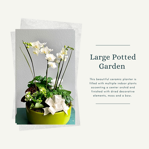 Large Potted Garden