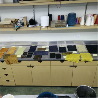 Natural Dyeing workshop and Talk at School of Human Ecology UW, Madison