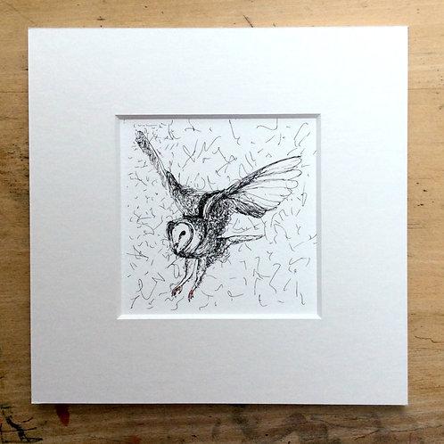 Solo Range Flying Owl Print