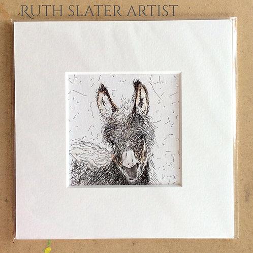 Baby Donkey Mounted Print