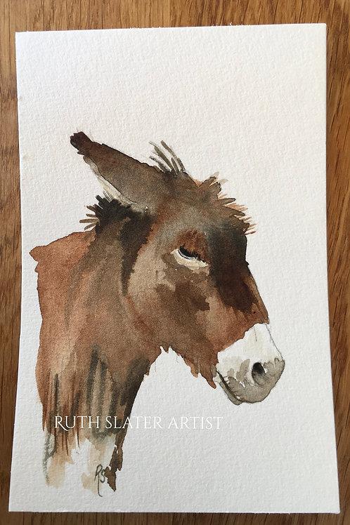 Donkey *2