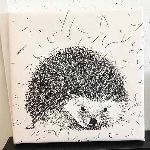 Mini Hedgehog Canvas
