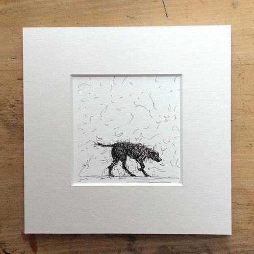 Walking Dog Print