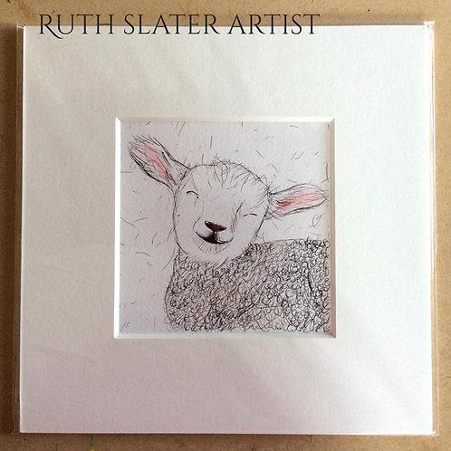 Smiling Lamb Mounted Print