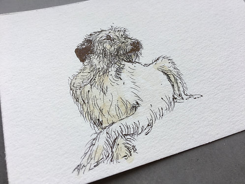 Wolfhound postcard original 2nd May