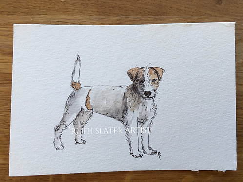 Terrier Postcard May 16th