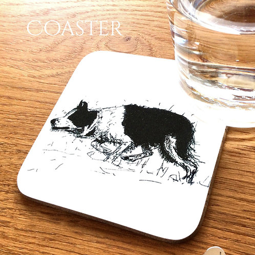 Collie Herding Coaster