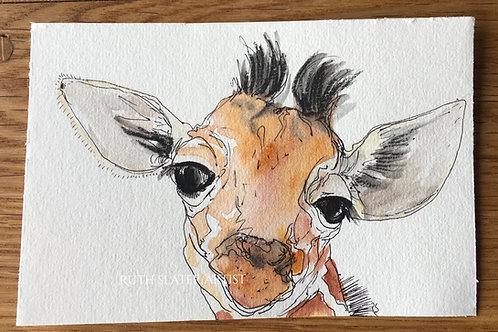 Watercolour Giraffe May 3rd