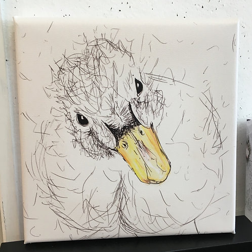 Mini Duckling Yellow Beak Canvas