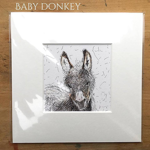 Young Donkey Print