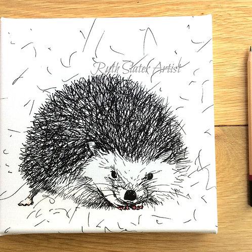 Small Hedgehog Printed Canvas