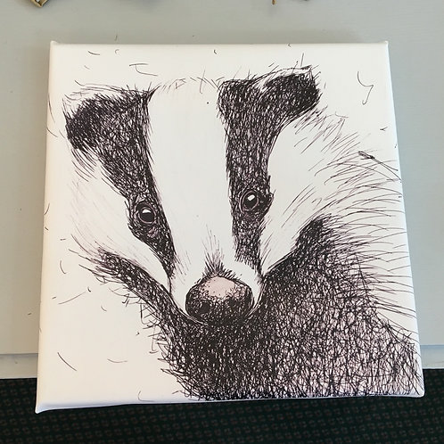 Badger Canvas (Med)