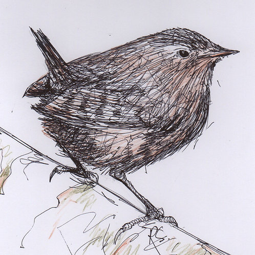 Mini Original Wren