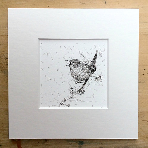 Solo Range Singing Jenny Wren Print