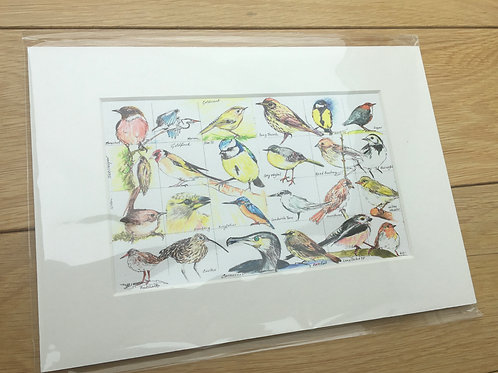 Birds of Bute (Print)