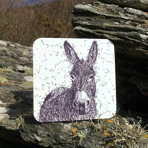 Solo Wire Work Donkey Coaster