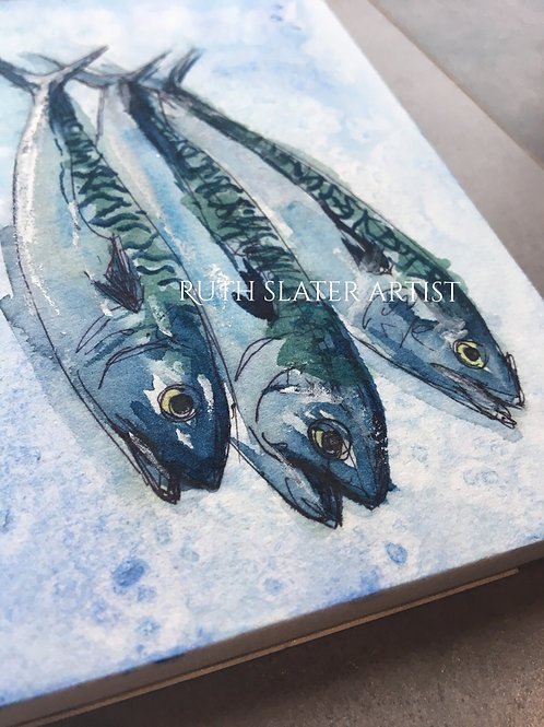 Mackerel Trio May 20th