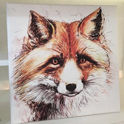 Fox Head Med Canvas