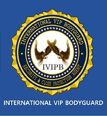 ivipb_logo-33333.png