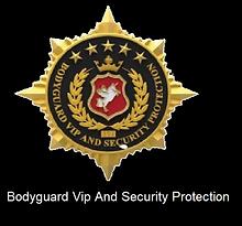 BDYGUARD VIP_logo-website (A PUBLIER_LE