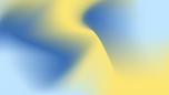 Visual Idenity Image 2