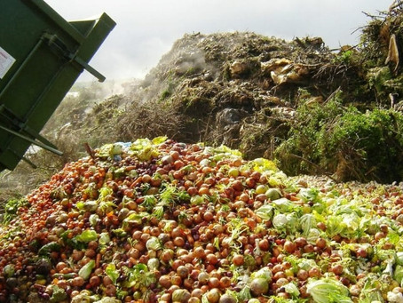 This World Food Day, Let's eliminate Food Waste