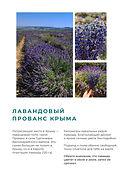 Крымские Винодельни Travel Inspirator (8