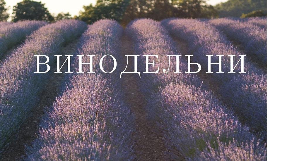 Крым Винодельни