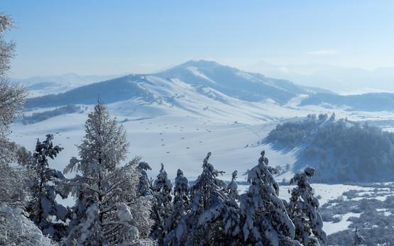 winter-3750556_1920.jpg