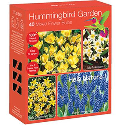 Hummingbird Garden - 40 Mixed Flower Bulbs