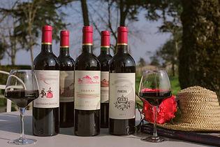 cours-degustation-vin-bordeaux[1].jpg