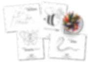 TLY_colouring sheets.png