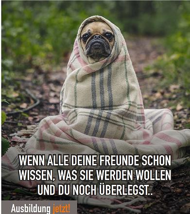 hund_schüler.png