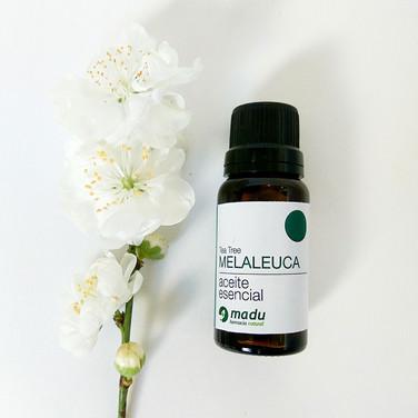 Aceite Esencial de Melaleuca - Tea Tree