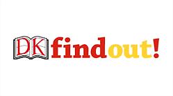 dk findout.png
