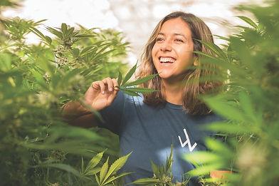 vie-magazine-carp-growers-california-1-min.jpg