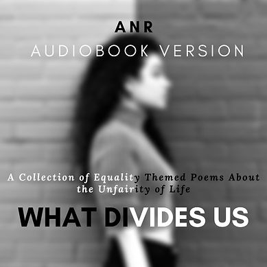 what divides us audiobook cover.jpg