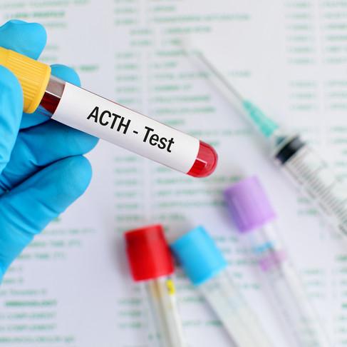 Hormona adrenocorticotropa (ACTH)