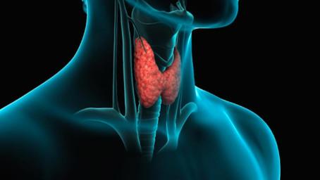 Hipotiroidismo (tiroides hipoactiva)