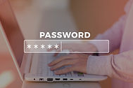 Password Box in Internet Browser.jpg
