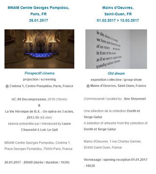 Expositions de Hoel Duret - Janvier 2017