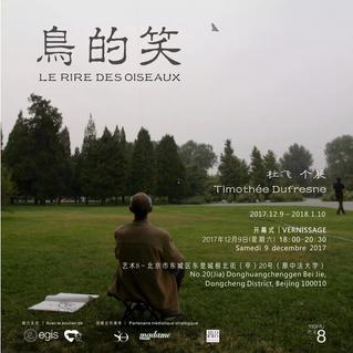 """""""Le Rire des Oiseaux"""", exposition de Timothée Dufresne, Lauréat 2017 du Prix Yishu 8 Franc"""