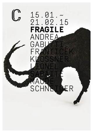 """Lionel Sabatté : """"FRAGILE"""" - Neuchâtel, Suisse"""