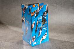 Dutch Film Festival 2017 brochure