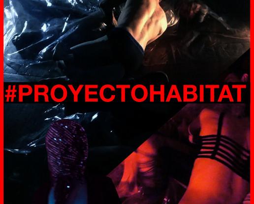 Proyecto Habitat